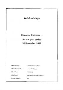thumbnail of Final Financial Statements 2017 Audit Rep